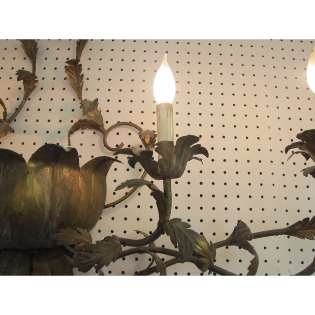 Large Brass Italian Gilded Lotus Wall Sconce - Image 5 of 6