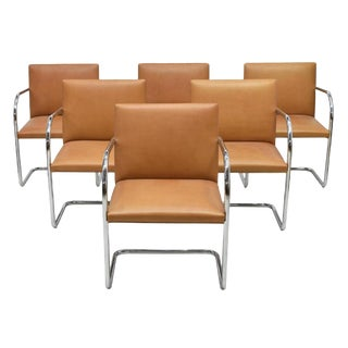Mies Van Der Rohe For Knoll Brno Tan Leather Armchairs - Set of 6 For Sale