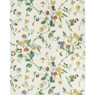 Cole & Son Sweet Pea Wallpaper Roll - Autumnal Mul/Crm For Sale