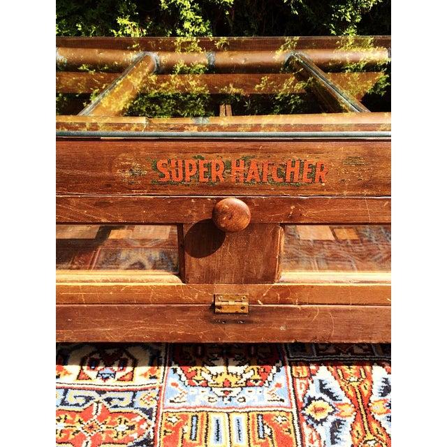 Primitive Super Hatcher Farm Copper Steam Incubator Farmhouse Coffee Table - Image 4 of 10