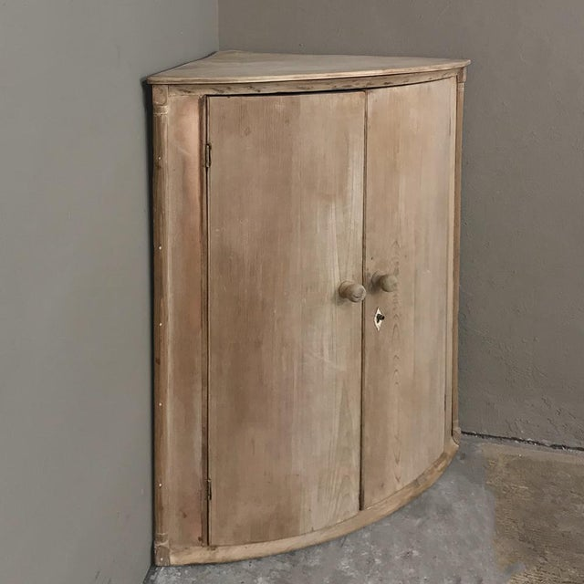 19th Century Swedish Stripped Pine Corner Cabinet For Sale - Image 4 of 12