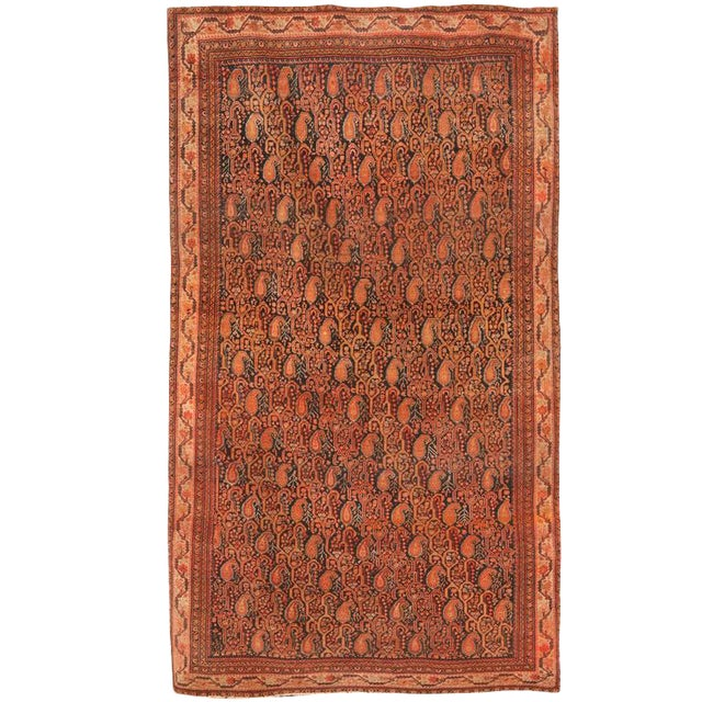 Antique 19th Century Persian Zili Sultan Rug For Sale