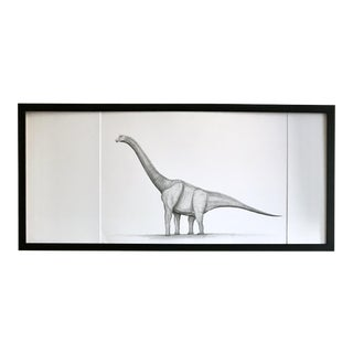 Framed Original Graphite Dinosaur Drawing