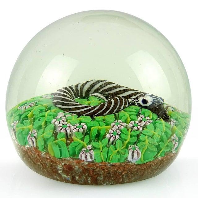 Wild Thing Glass Trinket Dish Studio Oh
