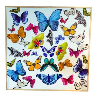 """Butterflies - a Collection"" Original Painting For Sale"