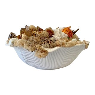 Decorative Bowl of Shells For Sale
