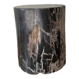 Boho Chic Petrified Wood Side Table For Sale