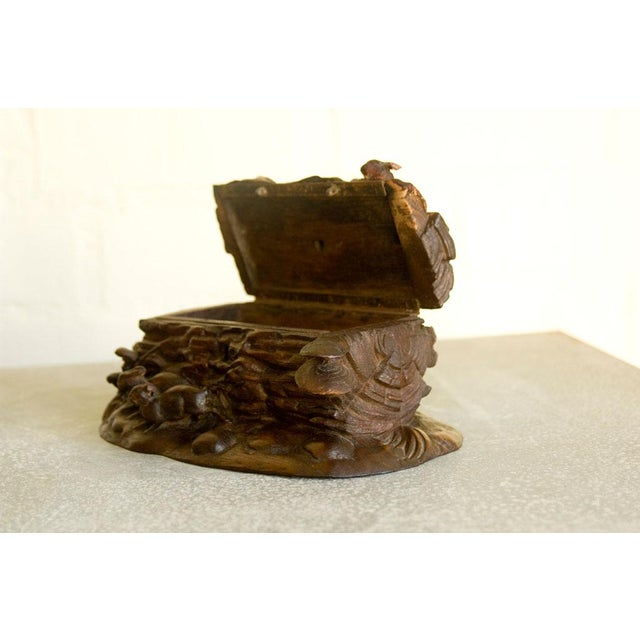 Early 20th Century Black Forest Box For Sale - Image 5 of 6
