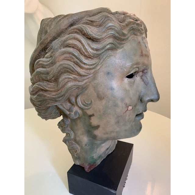 A gorgeous composite reproduction of the bronze bust held in the collection of the British Museum. This was purchased at...