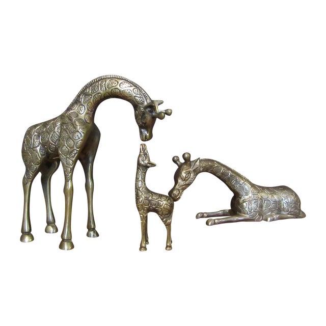 Vintage Brass Giraffe Family - Set of 3 - Image 1 of 6