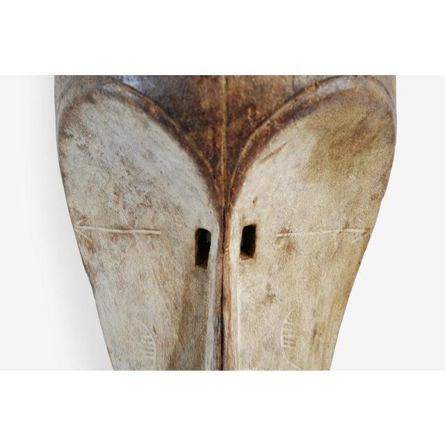 Fang Gabon Mask For Sale - Image 4 of 5