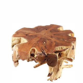Organic Modern Small Round Teak Root Coffee Table 1 Preview