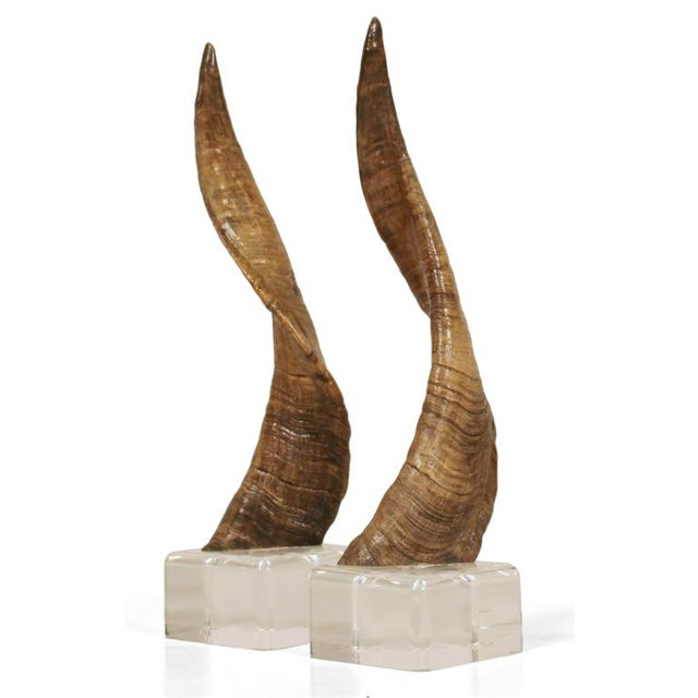 African Horns on Lucite Bases after Karl Springer - a Pair - Image 2 of 5