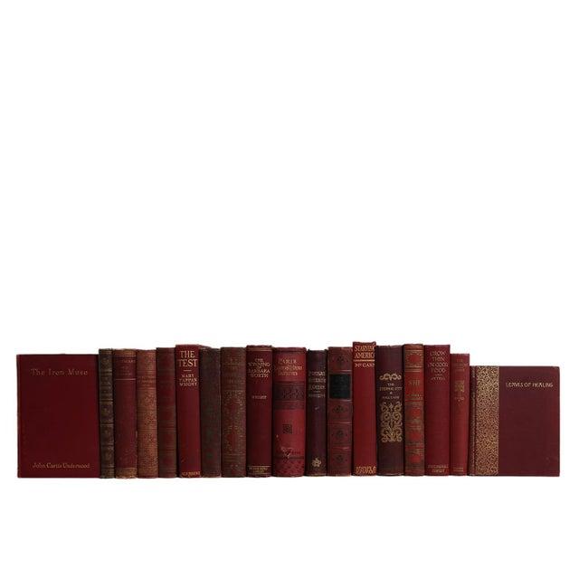 Transitional Vintage Cranberry & Gilt Book Set, S/18 For Sale - Image 3 of 3