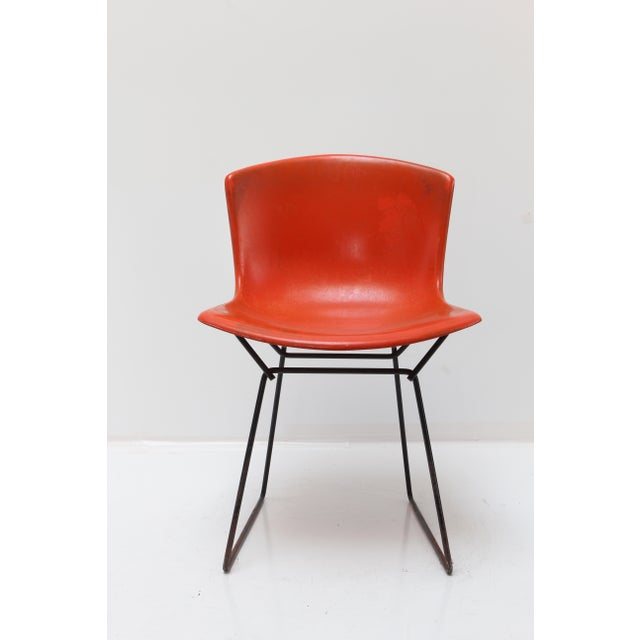 An original Knoll Bertoia fiberglass side chair. The fiberglass seat is a bright red orange with a black base. The bottom...