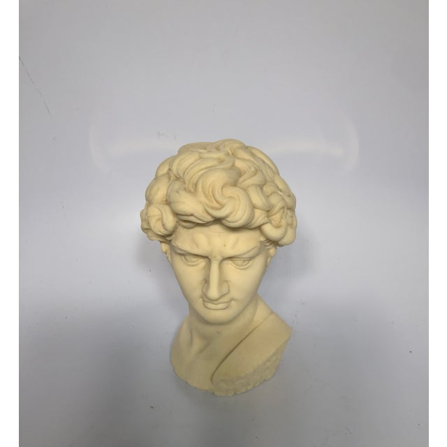 Mid-century composite David bust marked G. Carusi. Makes a beautiful statement in any room.