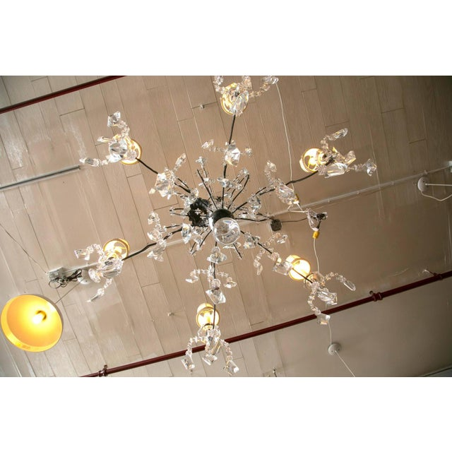 Crystal Holly Hunt Wrought Iron & Crystal Chandelier For Sale - Image 7 of 10