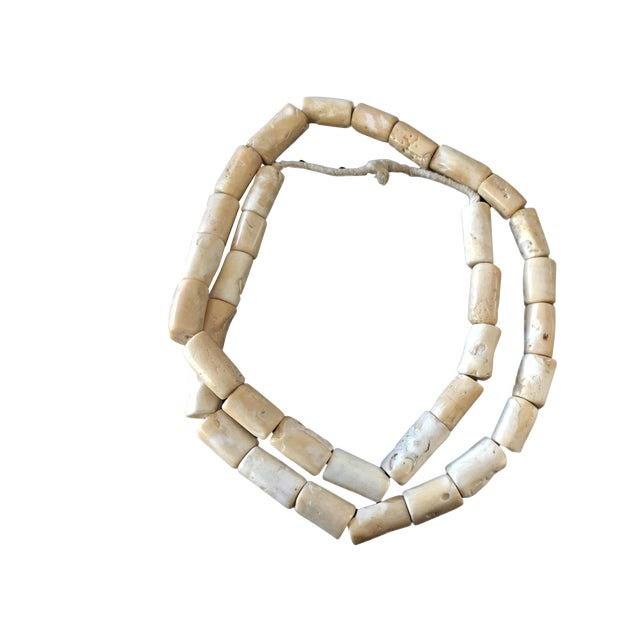 Trade African Natural White Coral 35 Beads For Sale