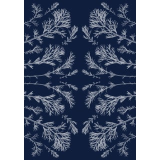 """""""Vintage Pressed Flowers Nº4"""", Kaleidoscopic Plant Pressed Cyanotype, Limited Edition For Sale"""