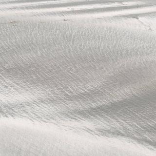 "Gaétan Caron ""Texture 10: Shell Dust"", Mendocino, Ca Photograph, 2015 2015 For Sale"