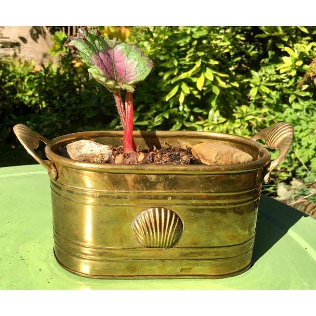Gold 1960s Hollywood Regency Brass Oblong Planter With Shell Detail and Handles For Sale - Image 8 of 10