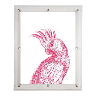 Mitchell Black Home Acrylic Framed Coo Coo Bird