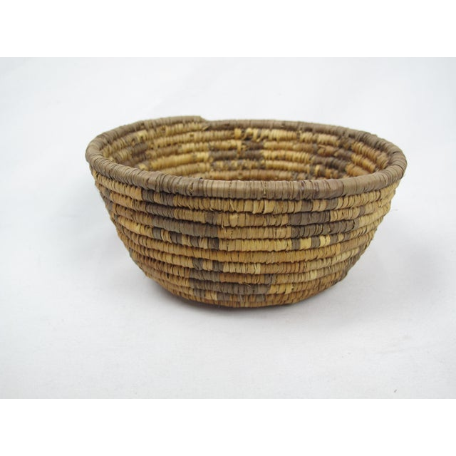 Mid 20th Century 20th Century Native American Zoomorphic Basket For Sale - Image 5 of 5