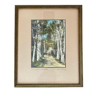 """Early 20th Century """"A Woodland Cathedral"""" Landscape Print by Wallace Nutting, Framed For Sale"""