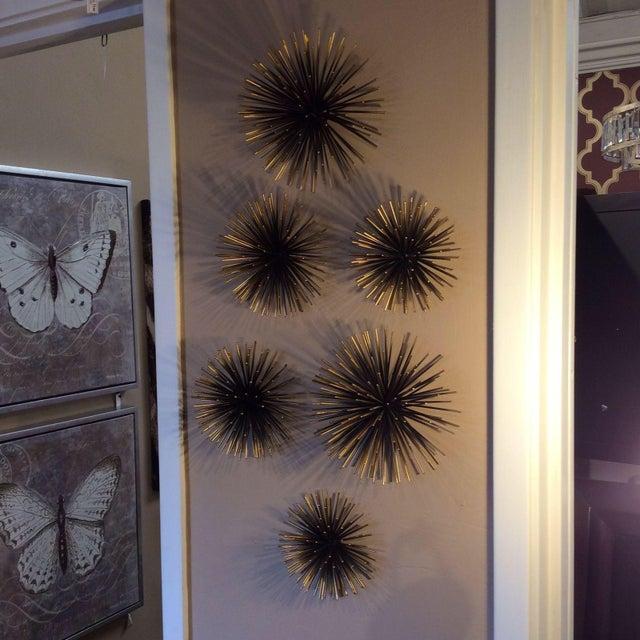 Wonderful Gold Tipped Sea Urchin Wall Decor - Set of 3 | Chairish EG88