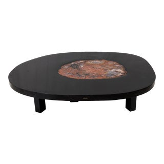 Coffee Table by Ado Chale in Resine and Petrified Wood, Circa 1970 For Sale