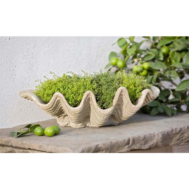 A cast stone planter in the shape of a clam shell, with a Verde finish. This listing is for the planter only. No plants...