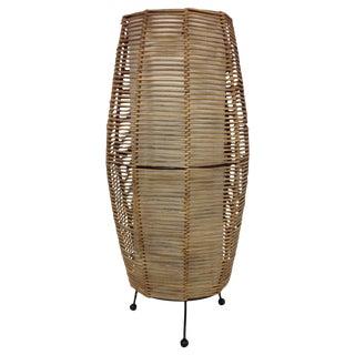 Cool Asian Modern Rattan Lamp