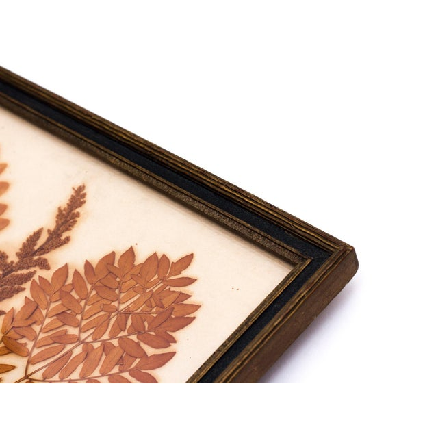 Pressed Fern Wall Hanging - Image 4 of 5