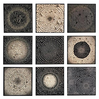 Amy Genser Black and White Squares #16-25 For Sale