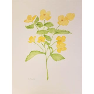 "Christine Frisbee ""Summer Begonia"" Original Botanical Watercolor Painting For Sale"