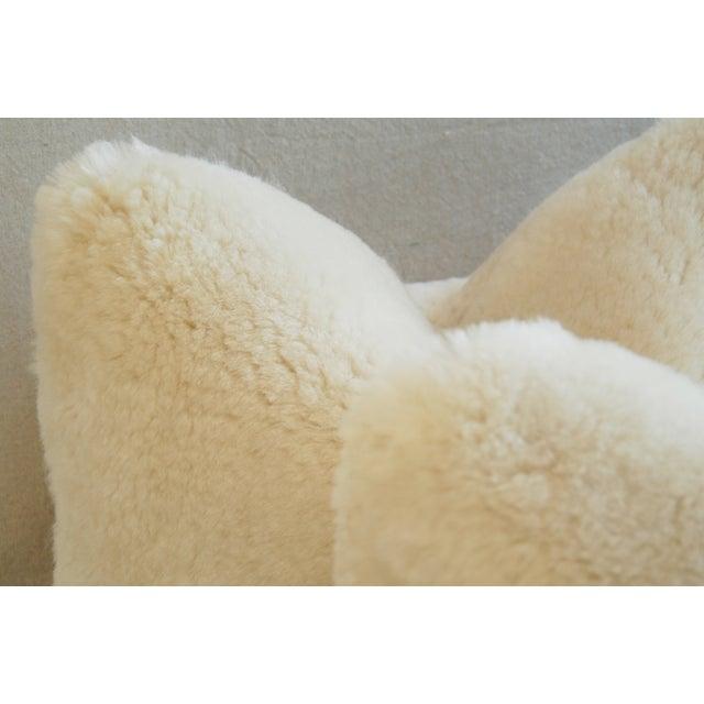 Plush Creamy Ivory Lambswool Pillows - Pair - Image 6 of 8