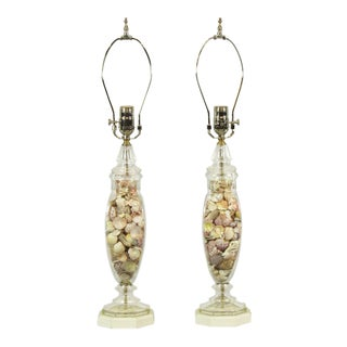 1960s Neoclassical Style Seashell Lamps - a Pair For Sale