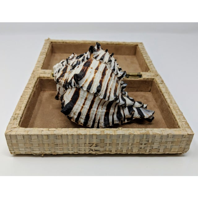 This Woven Straw Keepsake Box with Brass Hardware is a lined inside and on the bottom with a beautiful creamy caramel...