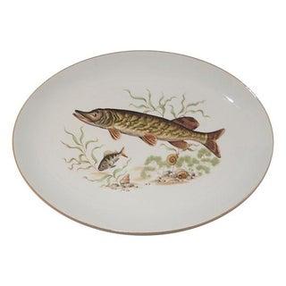Bone China Fish Platter
