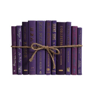 Modern Violet ColorPak - Decorative Books in Shades of Purple For Sale