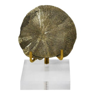AURA Sundial, Gold Encased Sundial Fossil For Sale