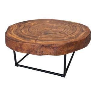 Slice of Tree Modern Coffee Table For Sale