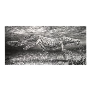 "Contemporary ""Gator"" Rick Shaefer Charcoal Print For Sale"