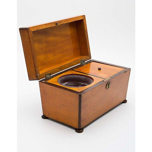 Satinwood 19th Century Satinwood Teacaddy For Sale - Image 7 of 11