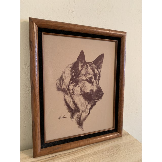 Traditional Vintage Mid-Century German Sheperd Dog Etching Print For Sale - Image 3 of 6
