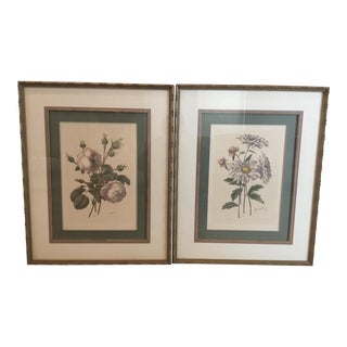 "19th C. ""Botanical Chromolithograph"" French Matted Prints Under Glass - A Pair"