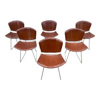 1970s Mid-Century Moden Knoll Bertoia Chairs With Seat Cover- Set of 6