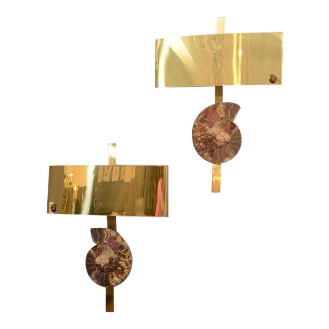 Pair of Ammonite and Brass Wall Lights For Sale