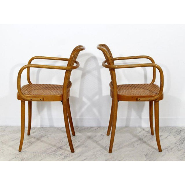 Mid-Century Modern Bentwood & Cane Prague Armchairs Hoffman for Stendig - a Pair For Sale In Detroit - Image 6 of 10