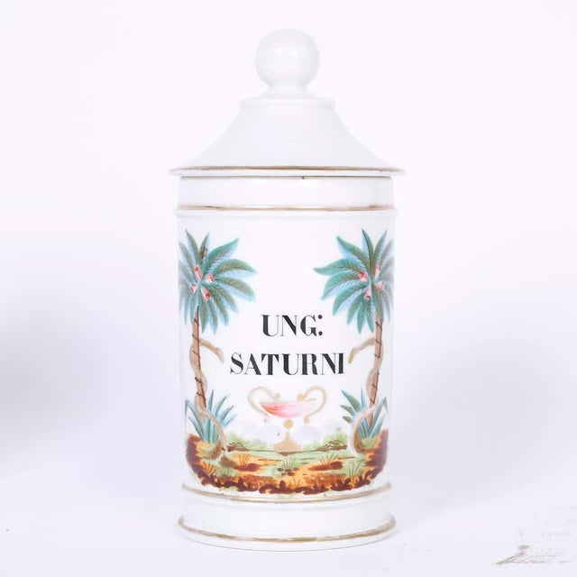 French 1920s French Porcelain Apothecary Jars - a Pair For Sale - Image 3 of 8